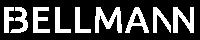 Falk Bellmann Logo Rechtsanwalt Steuerrecht Berlin